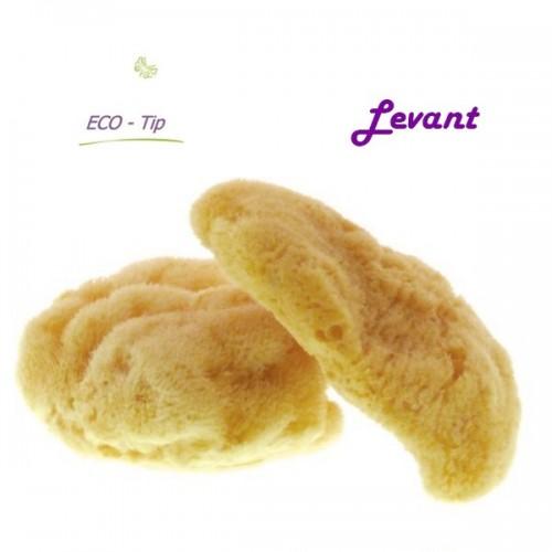 Přírodní mořská houba Levant nejlepší kavlity.
